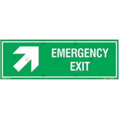 Emergency Exit Sign in Rectangle